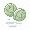 brussels sprouts, cabbage, food, groceries, healthy eating, vegetable icon