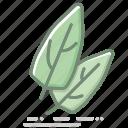 food, groceries, healthy eating, leaf vegetable, leaves, spinach, vegetable icon