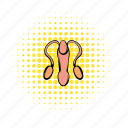 bladder, comics, gland, human, male, penis, reproductive icon
