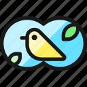 outdoors, bird