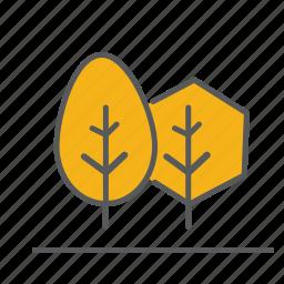 autum, cyprus, fall, leaves, outdoor, season, tree icon