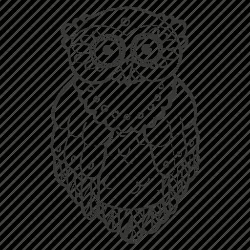 bird, coloring book, education, night, owl, realistic, school icon