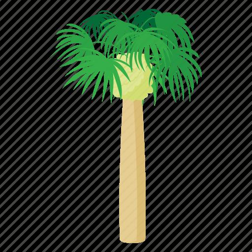 beach, cartoon, palm, plant, summer, tree, tropical icon