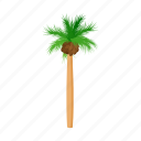 cartoon, design, palm, style, summer, tree, tropical icon