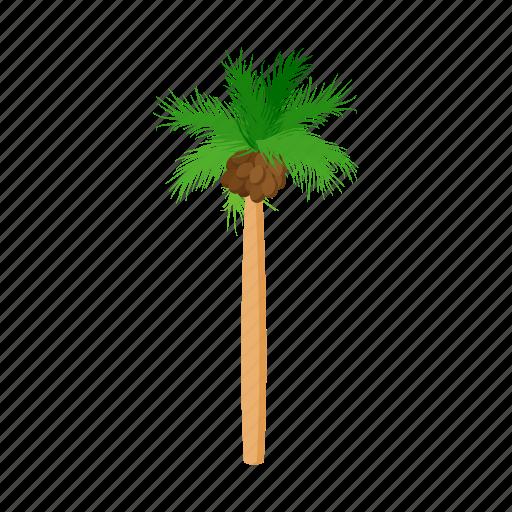 cartoon, design, palm, style, summer, tree, tropical icon