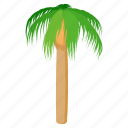 beach, cartoon, nature, palm, summer, tree, tropical icon