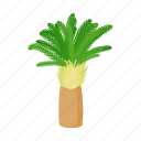 cartoon, date, palm, phoenix, style, summer, tree icon