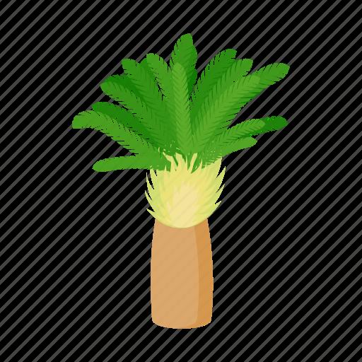 cartoon, date, palm, phoenix, style, summer, tree icon