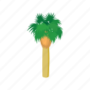 cartoon, nature, palm, summer, tree, tropic, tropical icon