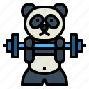 panda, bear, animal, ursidae, barbell