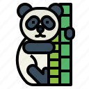 panda, bear, animal, ursidae, giant