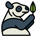 panda, bear, animal, ursidae, leaf