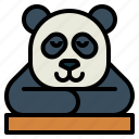 panda, bear, animal, ursidae, sleep