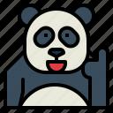 panda, bear, animal, ursidae, thumps, up