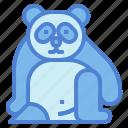 panda, bear, animal, ursidae, sit