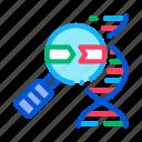 genetic, magnifier, molecule, research