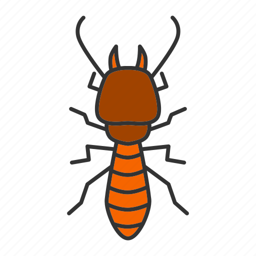 beetle, bug, insect, pest, termite, white ant icon