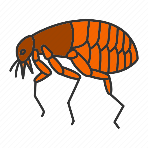 Animal, bloodsucker, bug, flea, insect, parasite, pest icon - Download on Iconfinder