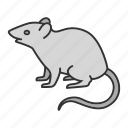 animal, control, deratization, mouse, pest, rat, rodent icon