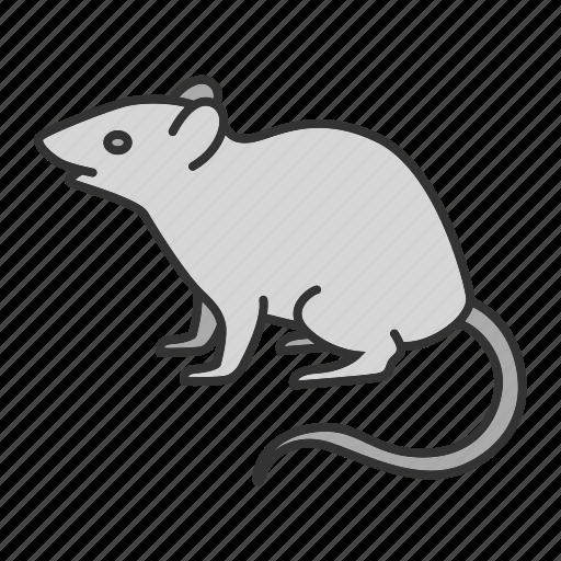 animal, control, deratization, mouse, pest, rat, rodent icon