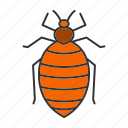 bed bug, bedbug, beetle, insect, parasite, pest icon