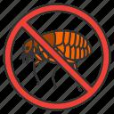 bug, control, flea, insect, parasite, pest, stop