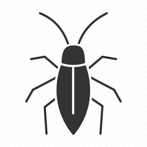 beetle, bug, cockroach, insect, parasite, pest, roach icon