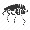 beetle, bloodsucker, bug, flea, insect, parasite, pest icon