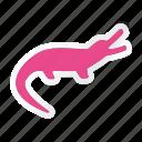 animal, animals, breed, crocodile, domestic, mammal, pet icon