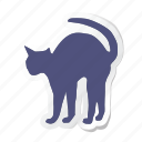 animal, animals, breed, domestic, mammal, pet, cat
