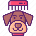 animal, dog, grooming, pet