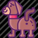 animal, expression, gland, pet icon
