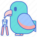 beak, pet, trimmer icon
