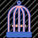 bird, cage, pet