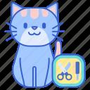 cat, grooming, pet icon