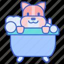 bath, dog, pet