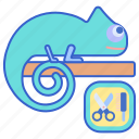 excotic, grooming, pet icon