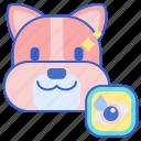 eye, pet, wipes icon