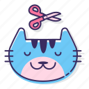 animal, cat, grooming, pet