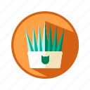 animal, cat, grass, plant icon
