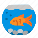 aquarium, bowl, fish, pet, tank