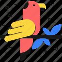 pet, animal, bird, parrot, twig