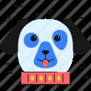 dog, animal, collar, pet, neckband, neckwear icon