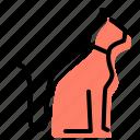 cat, pet, petshop, animal