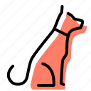 dog, pet, petshop, animal