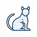 animal, cat, kitten, pet, pet shop icon