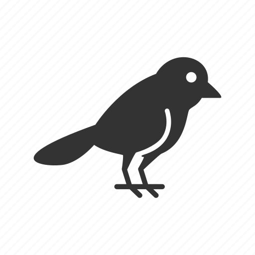 animal, bird, finch, pet, poultry, sparrow, warbler icon