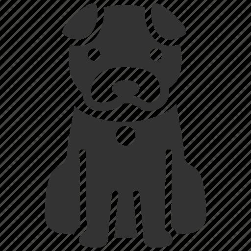 dog, dog training, hachi, k9, pet, sit, wait icon