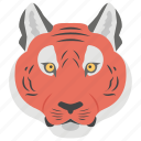african animal, endangered specie, leopard, tiger, wild animal