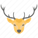 bucks, deer, fauna, wild animal, wildlife icon
